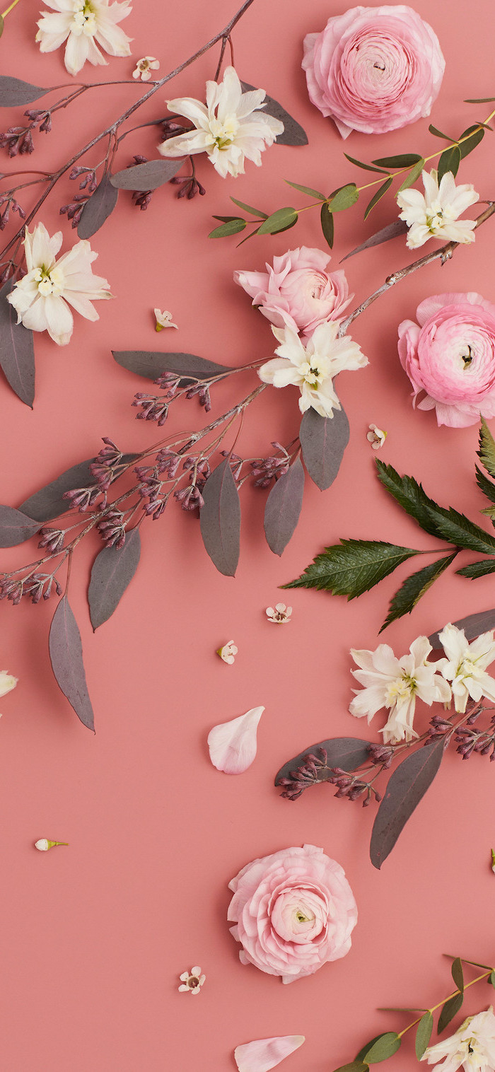 aesthetic desktop wallpaper white pink flowers branches arranged on pink background