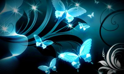 Background butterfly Wallpaper Unique Download butterfly Wallpaper 669 Hd Wallpaper