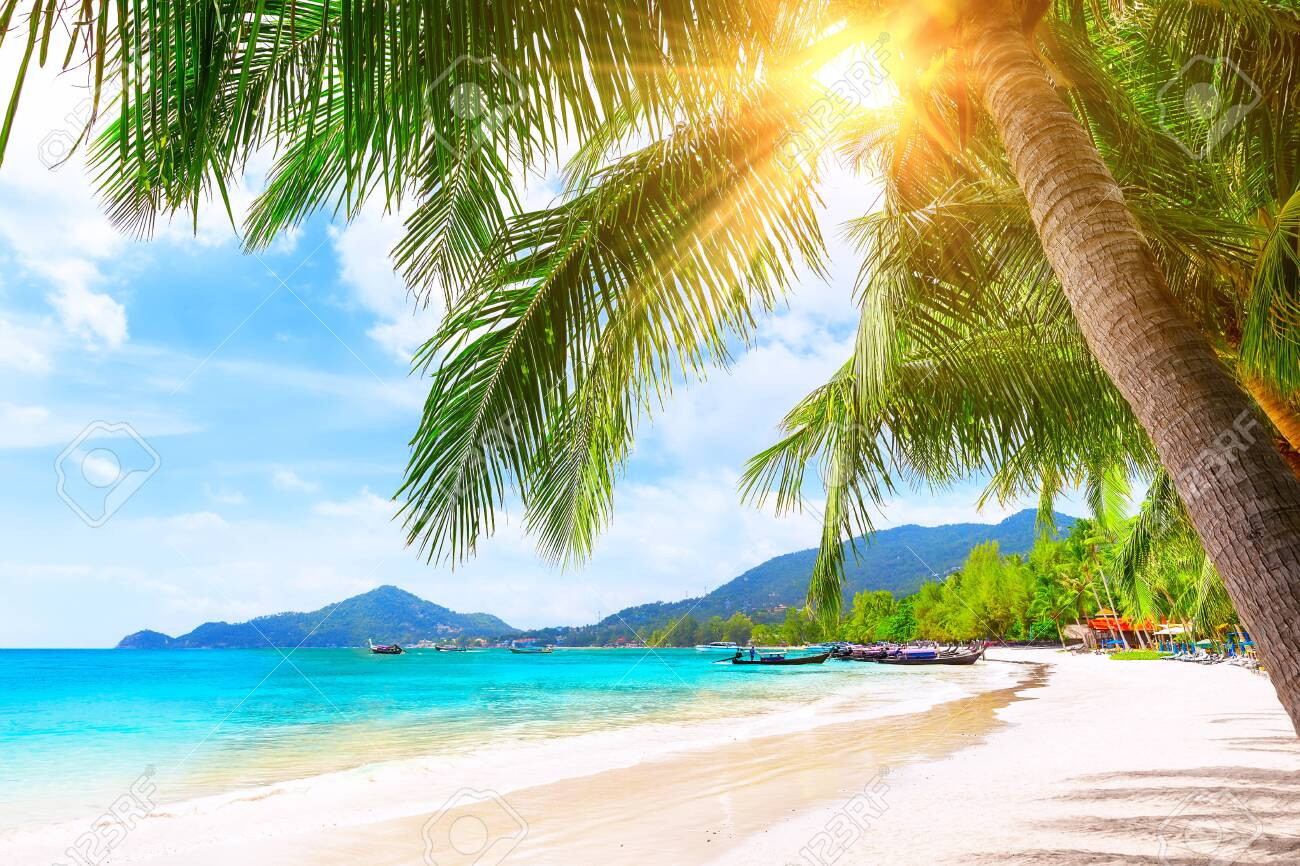 photo blue sky and beautiful sand beach in koh tao thailand vacation holidays background wallpaper view of