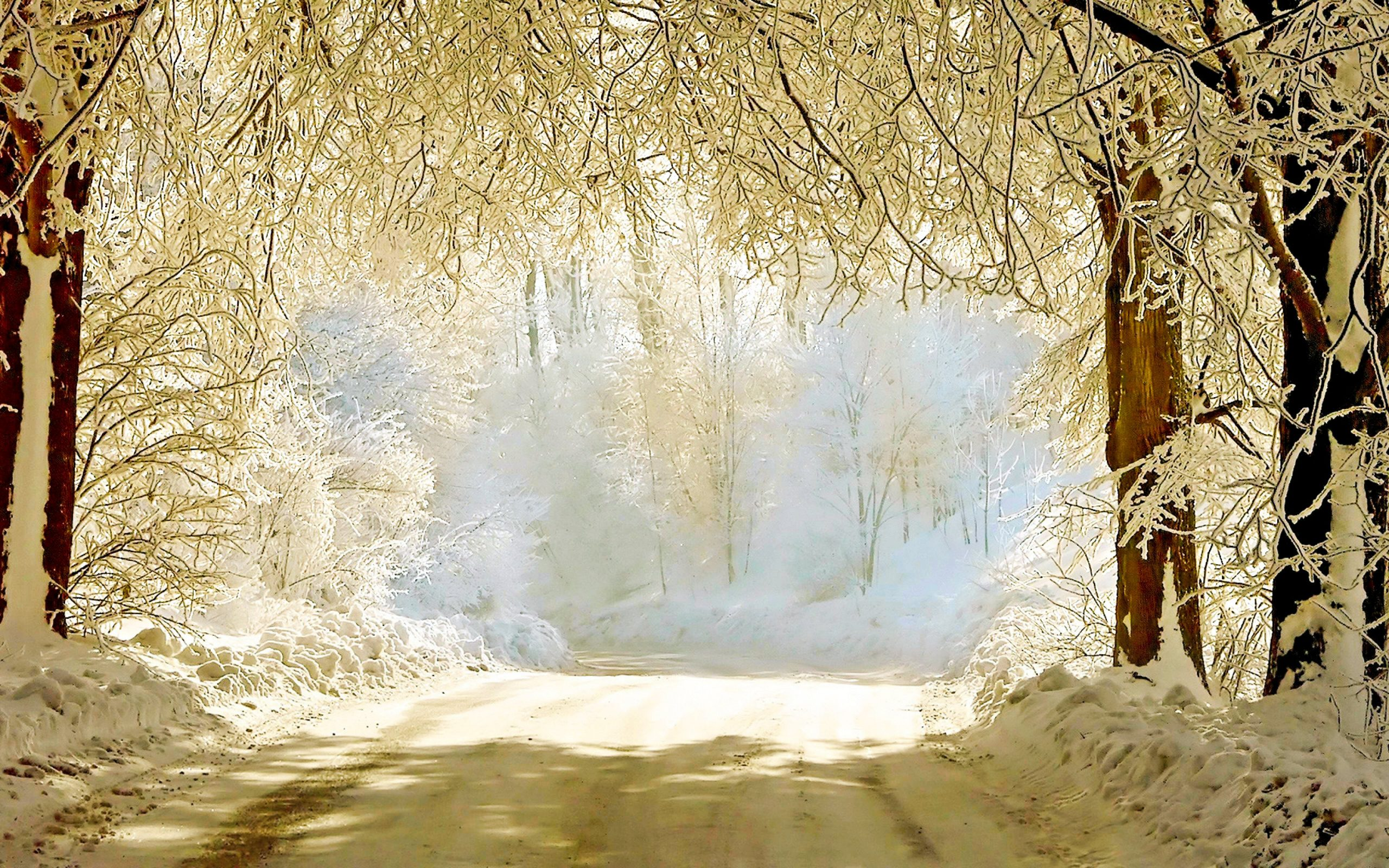 30 Beautiful Winter Wallpapers Backgrounds