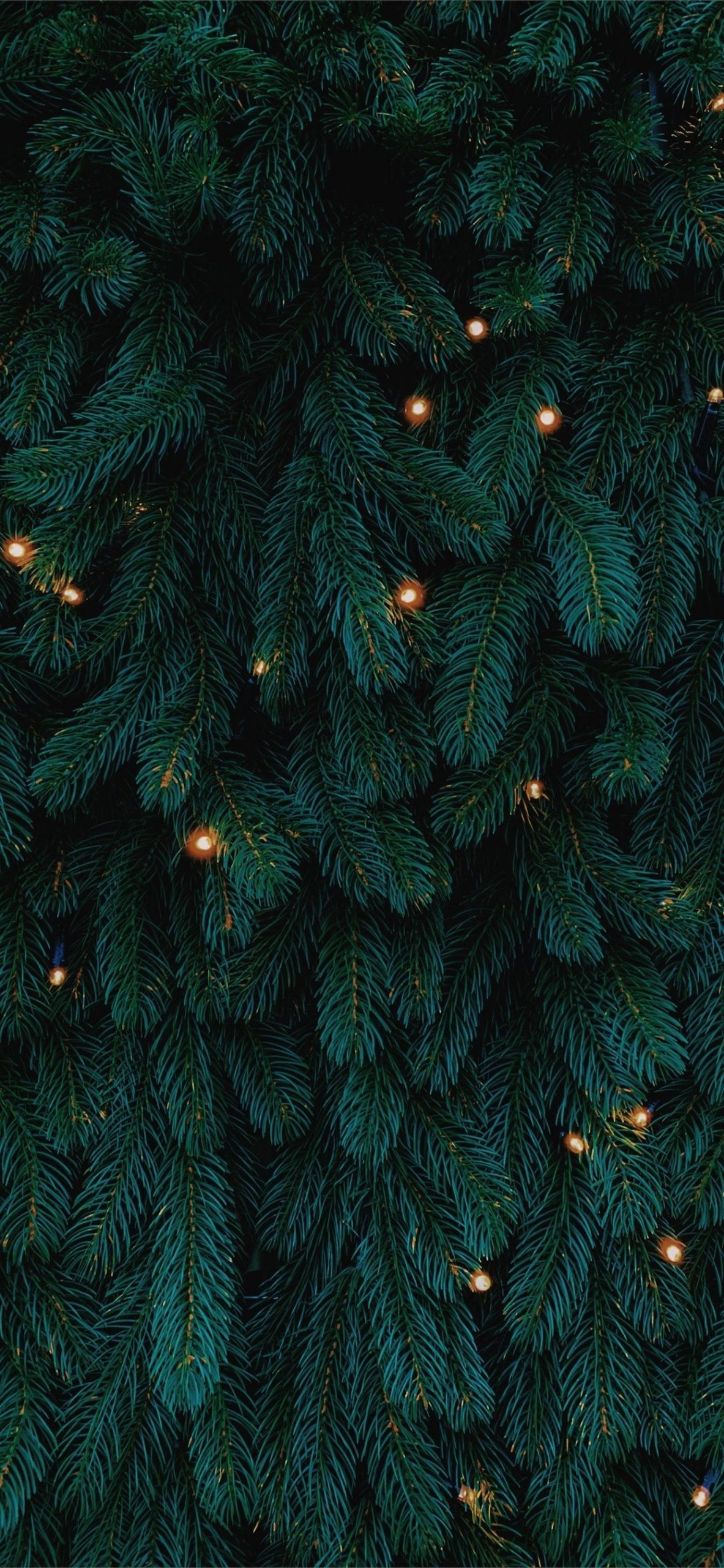 green Christmas tree with lights iphone 11 pro max wallpaper ilikewallpaper 1242x2688