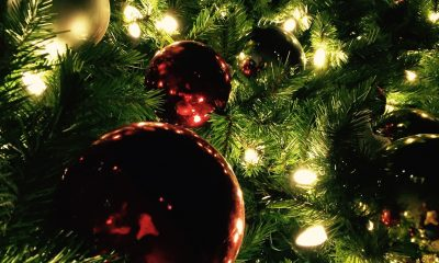 Christmas Tree Background iPhone Lovely Christmas iPhone Wallpaper 🎄