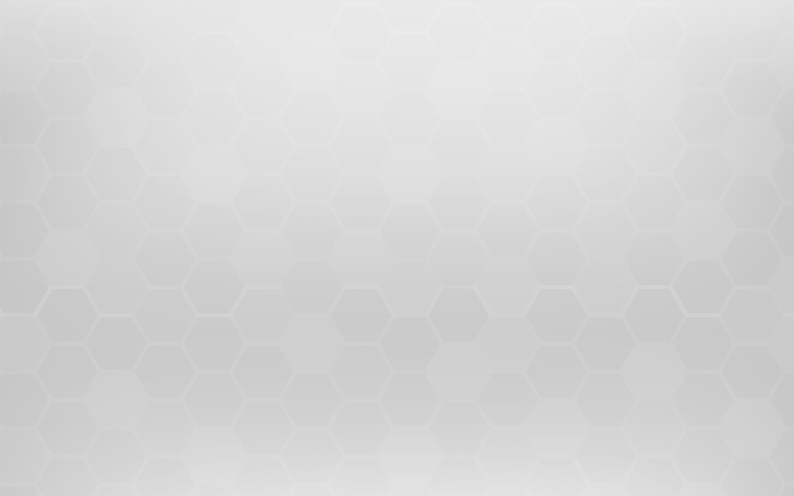 vector white grey honey b abstract background wallpaper and texture concept minimal theme