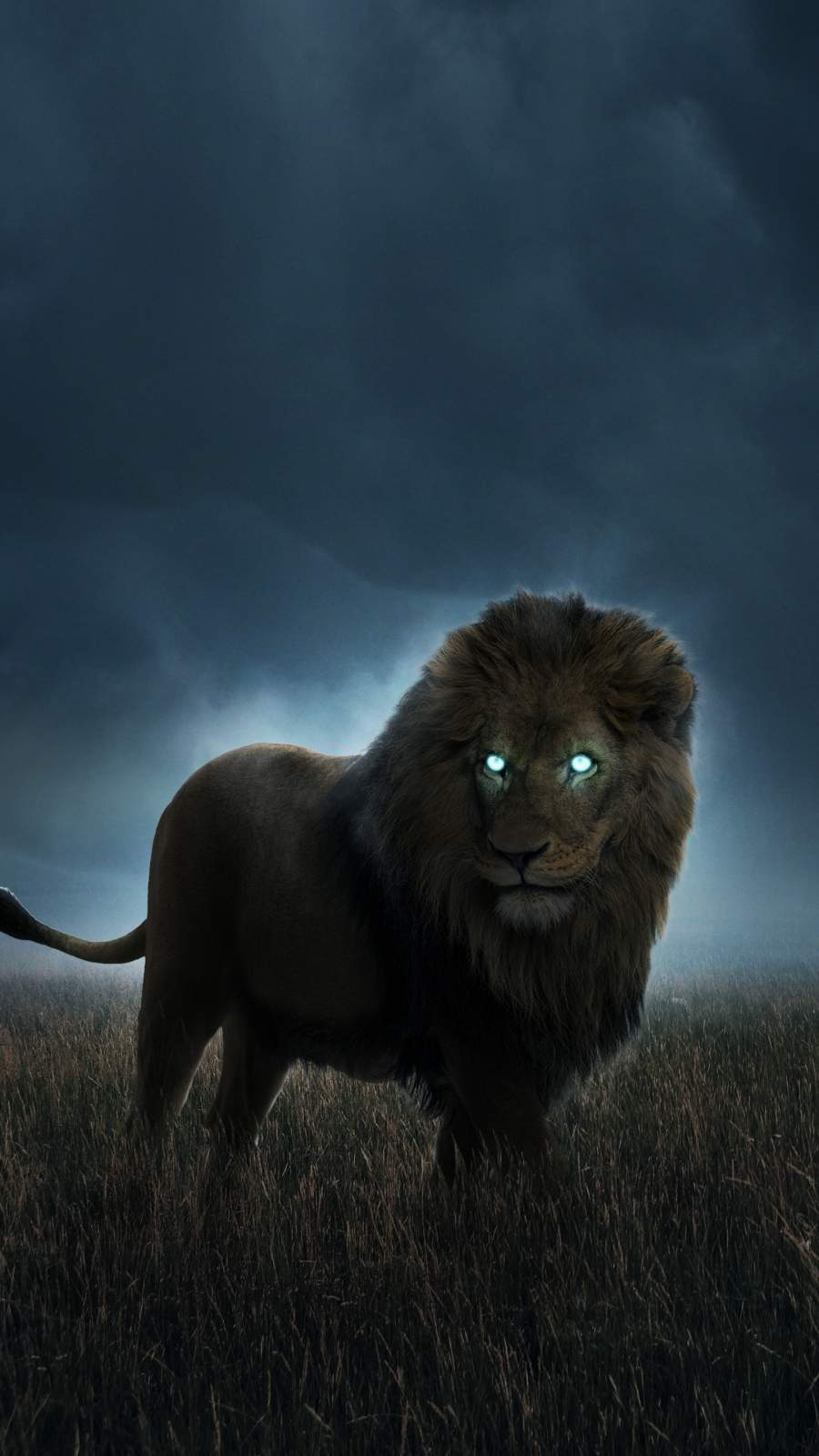 Hunting Lion iPhone Wallpaper