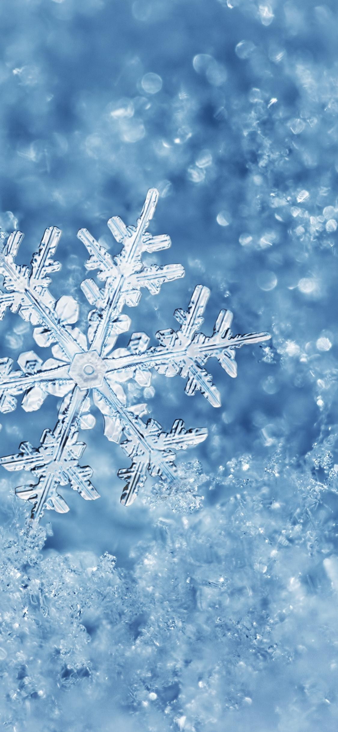 perfect snowflake cold and ice macro winter wallpaper 1125x2436