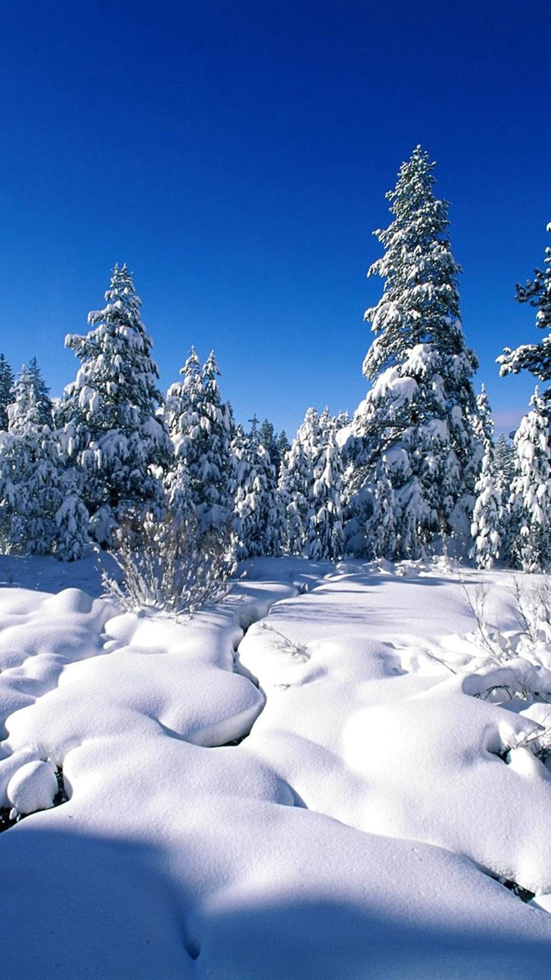 Winter Wallpaper for Iphone Download Free