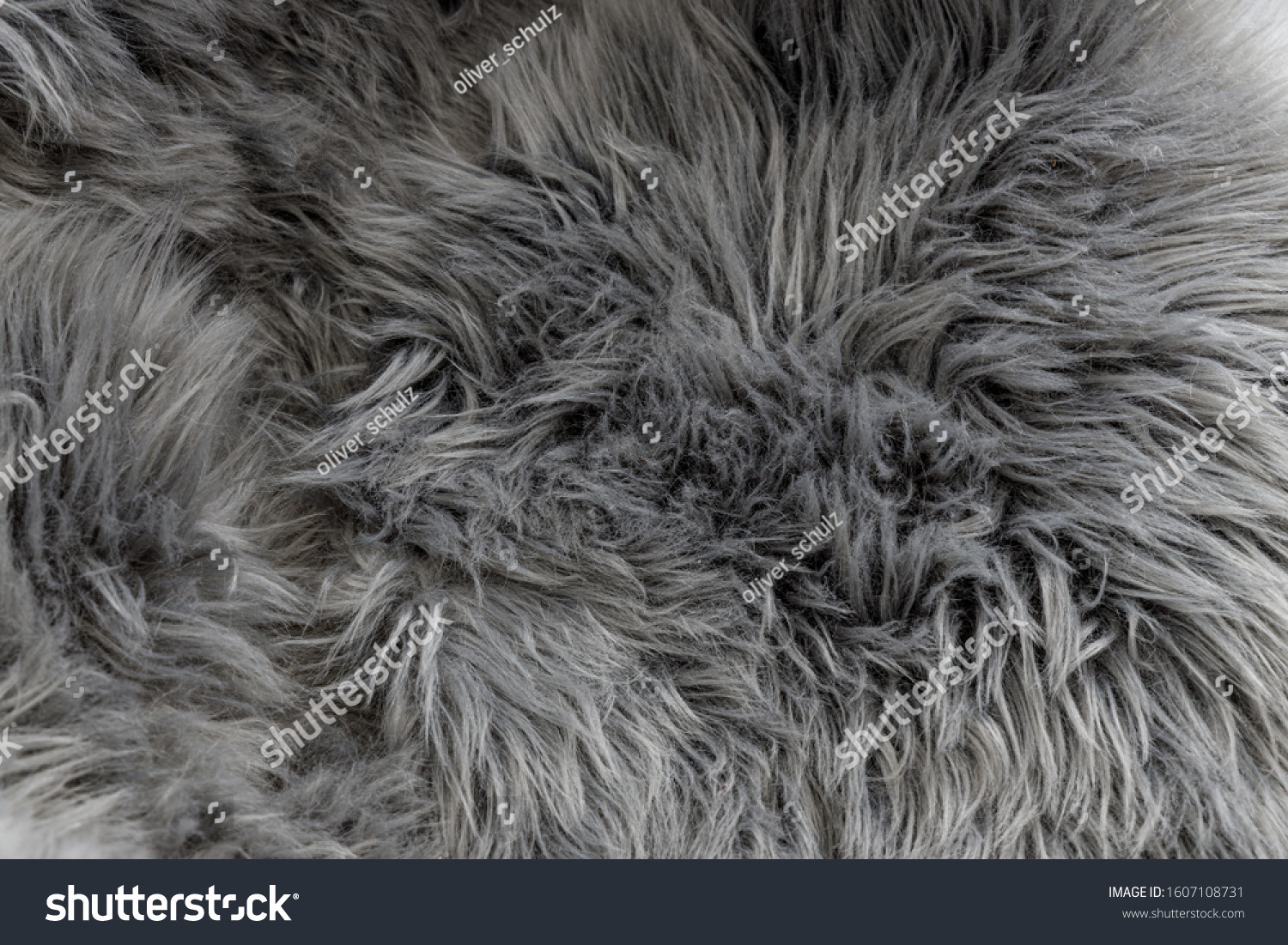 stock photo grey long fluffy fur in neutral light condition as background wallpaper