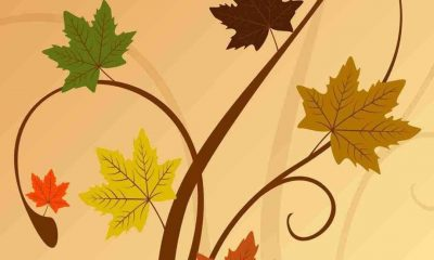 Thanksgiving Background iPhone Elegant Thanksgiving for iPhone Papel De Parede Nawpic