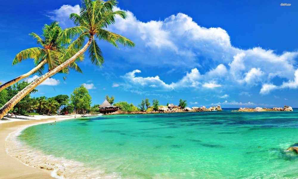 Wallpaper Beach Background Latest Tropical Beach Wallpapers top Free Tropical Beach