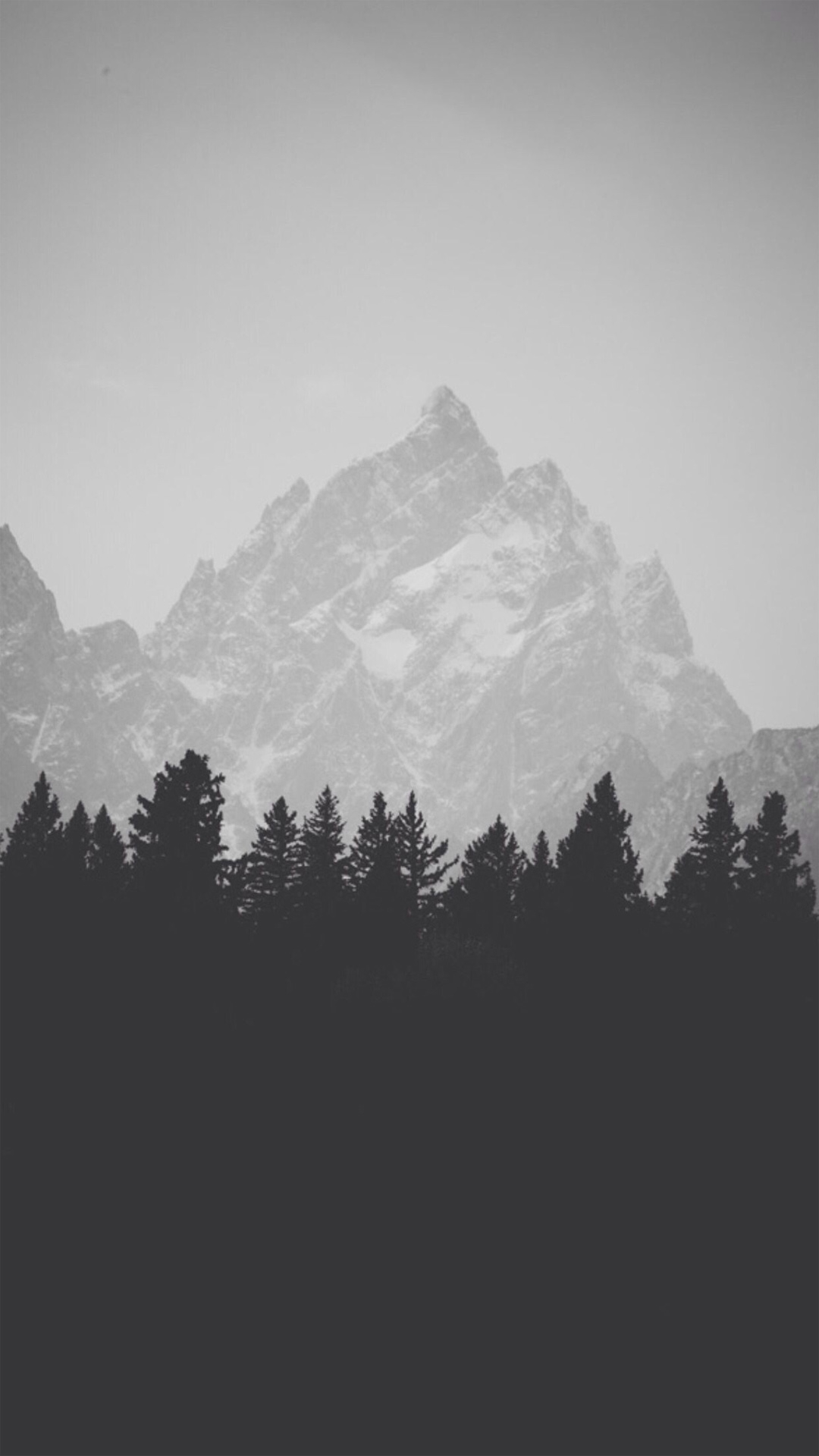 mountain top behind pine forest black and white iphone 6 hd wallpaper